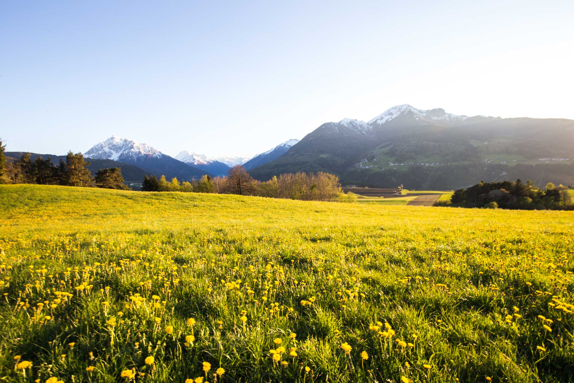 Natur zum Erleben – Tiroler Bio Kosmetik